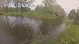 Английский пруд петергоф рыбалка О рыбалке