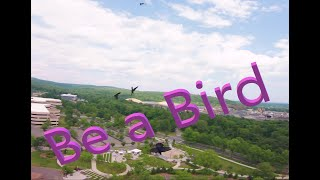But have you ever been a bird? July 4th FPV shenanigans