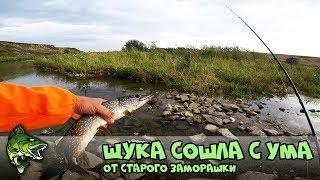 Новотроицкое водохранилище рыбалка на хищника о рыбалке