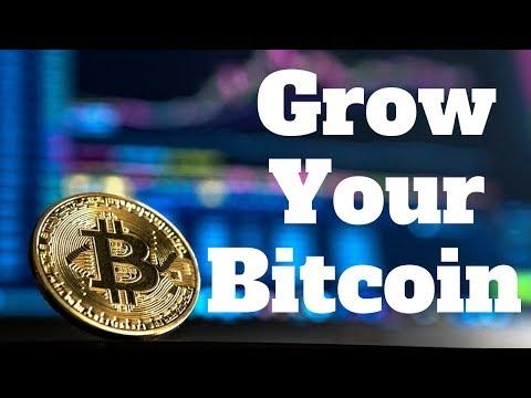 Bitcoin prekiauja tiesa
