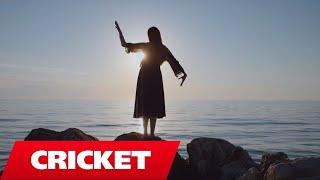 Elinel ft Lindon - T'kom dasht (Official Video)
