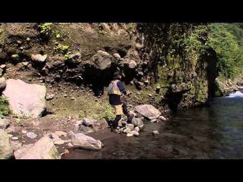 Vobler DUO Ryuki 50S Awabi 5cm 4.5g DNH4042 Ayu AM S