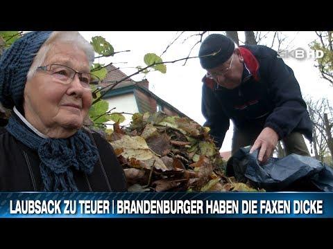 LAUBSACK ZU TEUER | BRANDENBURGER HABEN DIE FAXEN DICKE