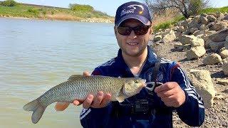 Рыбалка в ставропольском крае канал широкий