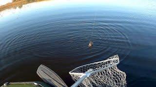Рыбалка 35 отчеты о рыбалке