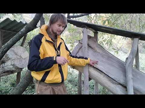 Колодное пчеловодство и клещ варроа ч.1