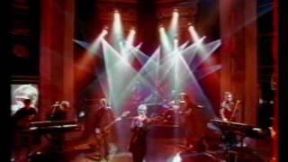 The Divine Comedy - Thrillseeker (NPA live, 1999)