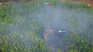 Assassin's Creed Origins Phalake Battle in Grass