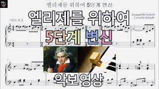 베토벤 - 엘리제를 위하여 5단계 변신 악보영상| 피아노 커버