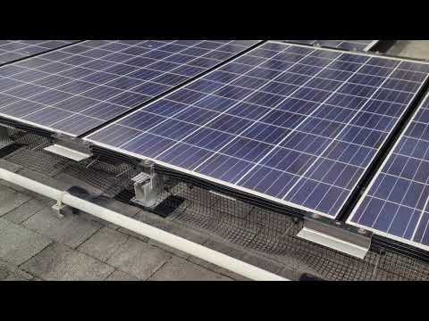 Protecting Solar Panels from Pigeons in...