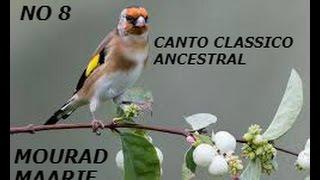 CD JILGUERO MALAGUENO CLASSICO ANCESTRAL NO 8