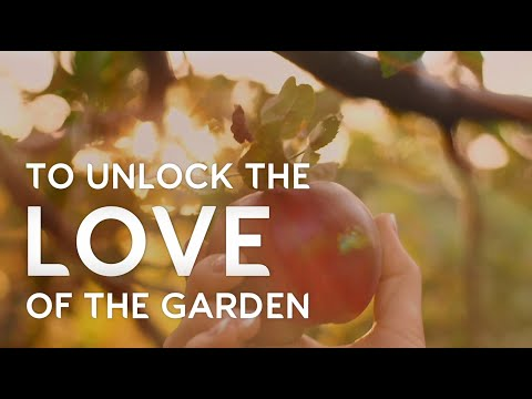 Evergreen Garden Care 2020 Growth rooted in change