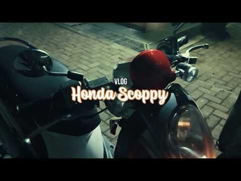 Honda Scoppy