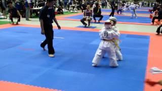 5й чемпионат мира по каратэ киокушинкай г.Токио