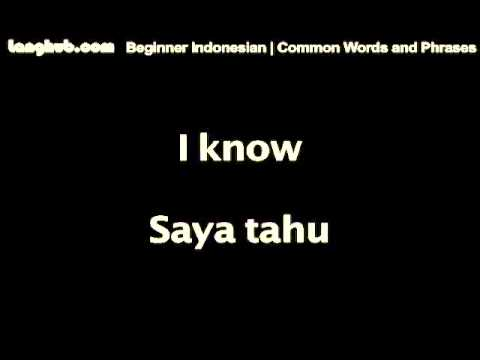Common Words And Phrases - Langhub.com [Learn Indonesian]