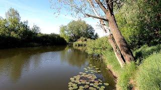 Самарская область рыбалка на реке чапаевка
