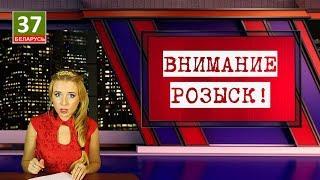 Налог под фотофиксацией.  Главные новости Беларуси. ПАРОДИЯ. 18-ый выпуск.