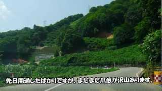 夏の福島ドライブへ