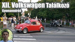 preview picture of video 'XII. Nemzetközi Volkswagen BOGÁR Találkozó - Gyomaendrőd 002'