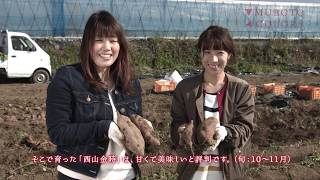 MUROTO 4COLORS 秋冬編