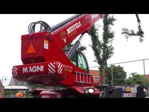 Muffels: Magni & GMT050
