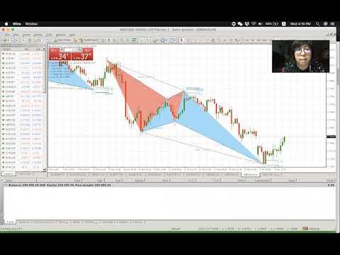 Binance bot trading