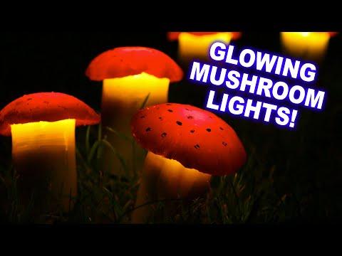 Solar garden mushroom test top bestseller comparison mushroom lawn lights aloadofball Choice Image