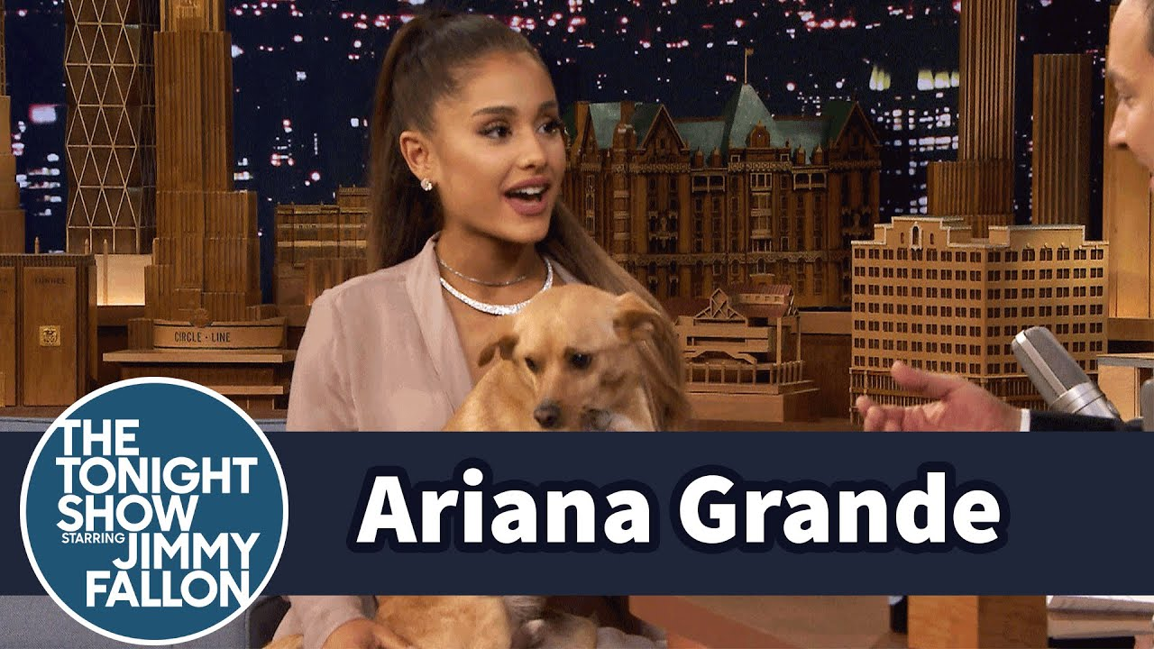 Ariana Grande Shows Off Her Winking Dog Toulouse and Sassy Nonna thumbnail
