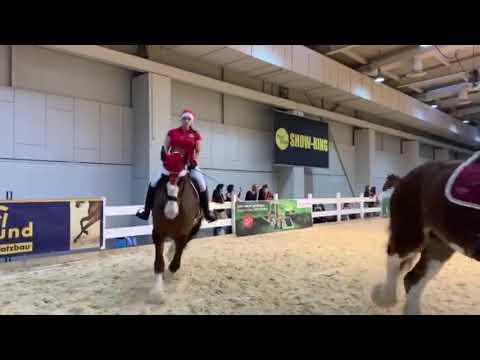 Pferd & Jagd 2018