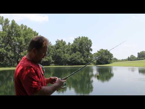 Bass Fishing In My Country Pond, Part 1