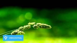 Sean Kingston - Beautiful Girls (Andie Roy & Suntimechild Remix) [Deep House]