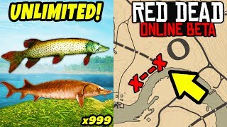 *NEW* SECRET UNLIMITED FISH LOCATION TO MAKE FAST MONEY in Red Dead Online! Best GLITCH Tips RDR2!