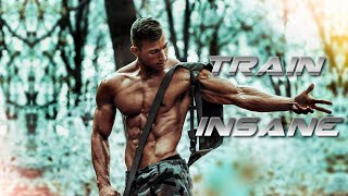 TRAIN INSANE - Aesthetic Fitness Motivation