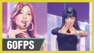 60FPS 1080P | Apink - Eung Eung, 에이핑크 - %% Show! Music Core 20190112
