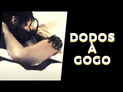 Dodos à Gogo!