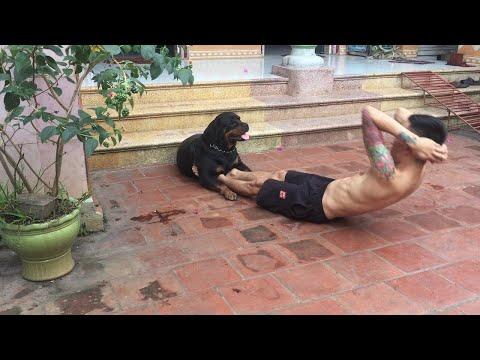 הכלב החמוד הזה עוזר לבעלים שלו לעשות כפיפות בטן