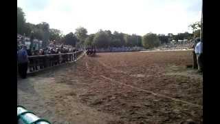 preview picture of video '16-Spänner Postkutsche Hengstparade Moritzburg 2012'