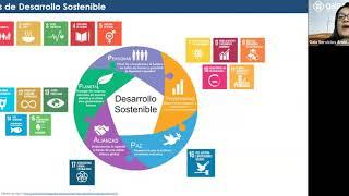 Webinar Gaia: Indicadores ambientales en el marco de los Objetivos de Desarrollo Sostenible