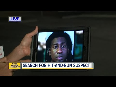 Investigators search for driver after deadly hit-and-run
