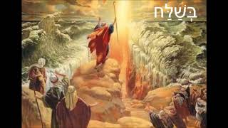 Even Shlomo – Parshat Beshalach