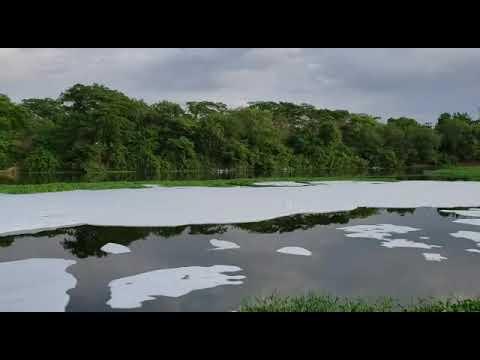 Espuma da morte invade o Rio Poty no coração de Teresina Piauí