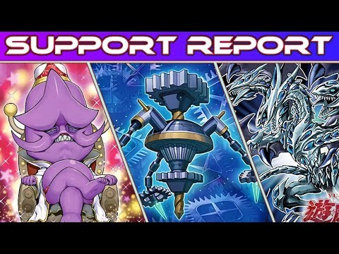 Support Report - Ojama/Malefic/Blue-Eyes (and More)