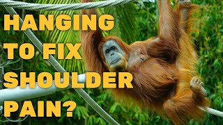 Will Hanging Like An Ape Help Your Awful Shoulder Pain? 25 True Believers