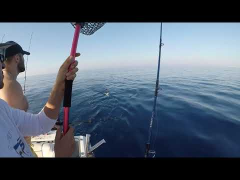 Рыбалка на Кипре.