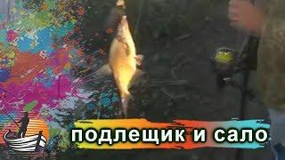 Как приготовить сало для рыбалки на леща