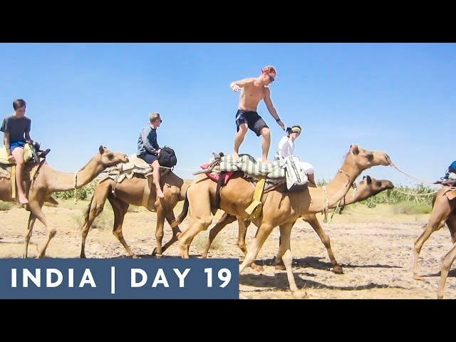 CAMEL SURFING | DAY 19 INDIA ADVENTURE