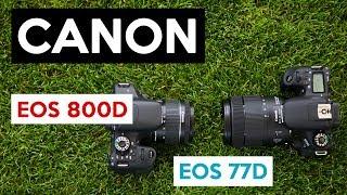 Canon EOS 77D vs 800D | geniale Einsteiger DSLR und perfekte VLOGGING KAMERA