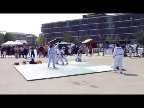 Démonstration technique