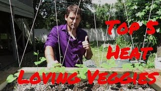 Top 5 Florida Heat Loving Veggies