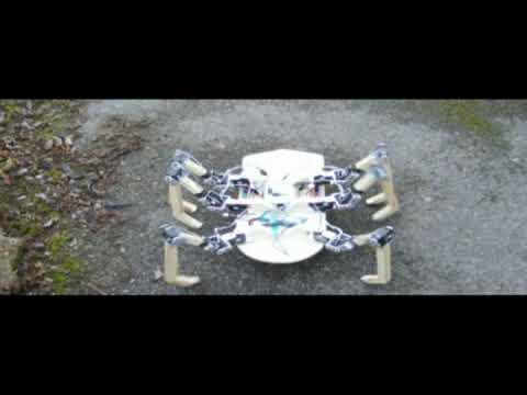 robot video thumbnail